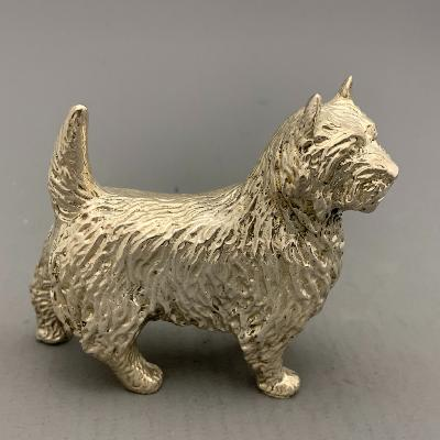Silver CAIRN TERRIER