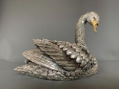 Silver SWAN - Looking Right